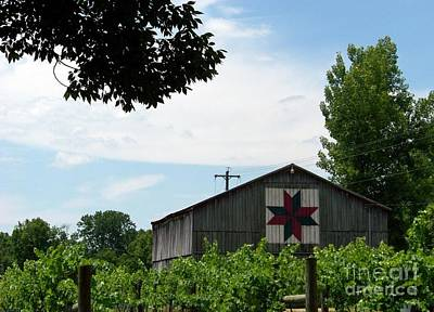 Quilted Barn And Vineyard Art Print by Charles Robinson