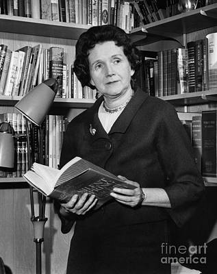 Rachel Carson Photograph - Rachel Louise Carson by Granger
