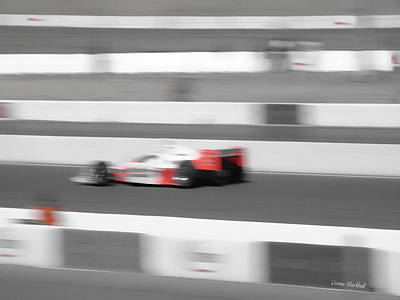 Photograph - Racing Stripes by Donna Blackhall