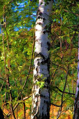 Woodlands Scene Digital Art - Radiant September by Mariola Bitner