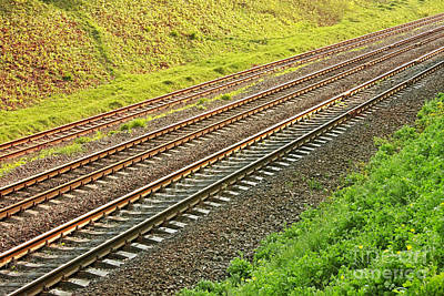 Rail Lines In Hollow Art Print by Volodymyr Chaban
