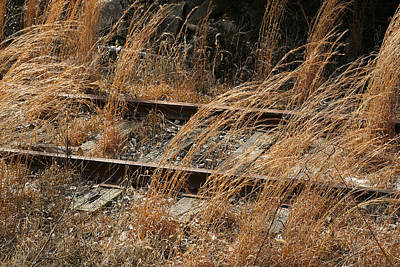 Rails Retired Art Print by Theresa Johnson