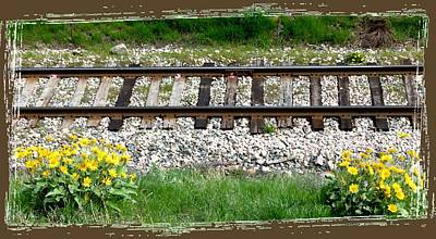 Digital Art - Railway Tracks And Wild Sunflowers by Will Borden