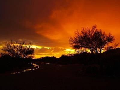 Photograph - Rain Afterglow by Regina Arnold