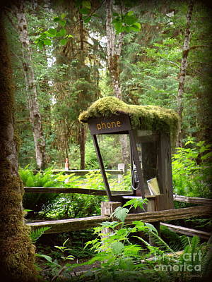 Art Print featuring the photograph Rain Forest Telephone Booth by Tanya  Searcy