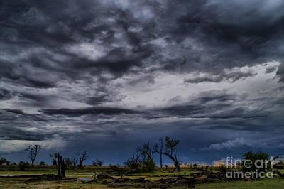 Photograph - Rain In The Okavango Delta by Mareko Marciniak