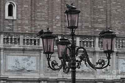 Olia Saunders Photograph - Rain In Venice by Design Remix