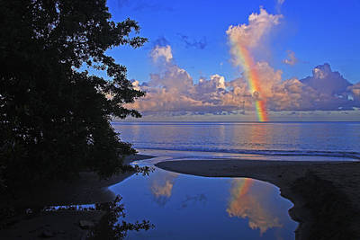 Photograph - Rainbow At Dawn- St Lucia by Chester Williams