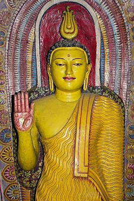 Photograph - Rainbow Buddha by Michele Burgess