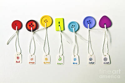 Rainbow Colored Buttons Art Print by Catherine MacBride
