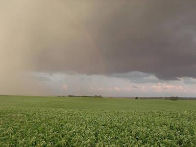 Rainbow Farm Field  Original by Brian  Maloney