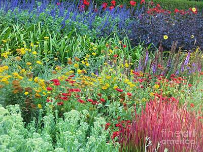 Photograph - Rainbow Garden by Michele Penner