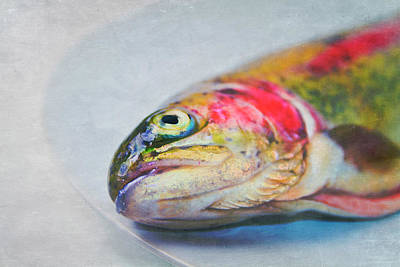 Focus On Foreground Photograph - Rainbow Trout On Plate by Image by Catherine MacBride