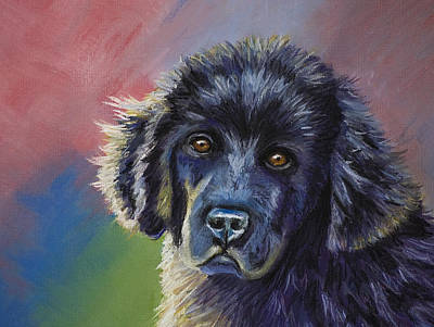 Drawing - Rainbows And Sunshine - Newfoundland Puppy by Michelle Wrighton