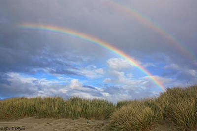 Rainbows Over The Sand Art Print by Tyra  OBryant