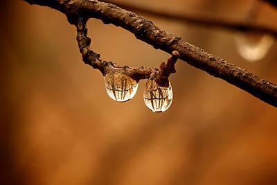 Raindrop Reflection Art Print