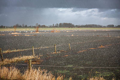 Pour Photograph - Rainfall by Semmick Photo