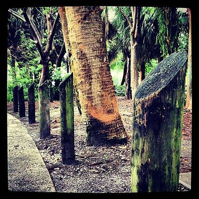 Pathway Photograph - Raining In The #park #gloomy #greenery by Lauderdale Ashley
