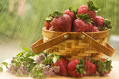 Photograph - Raining On Strawberries by Trudy Wilkerson