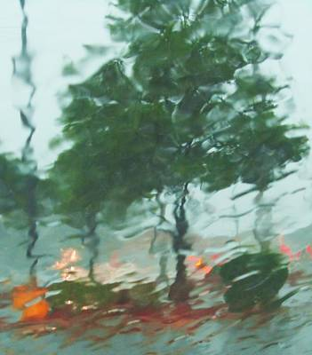 Photograph - Rainstrom-1 by Todd Sherlock