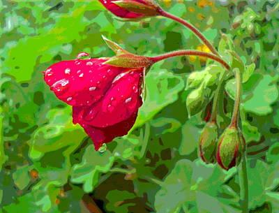 Rainy Geranium Bud Profile Art Print by Padre Art