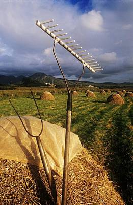 Rake With A Pitchfork On Hay In A Art Print by The Irish Image Collection