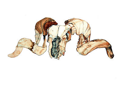 Ram Skull 2 Art Print by Alfred Dominic Ligammari II