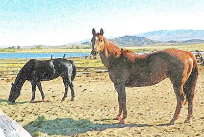 Ranch Horses Art Print