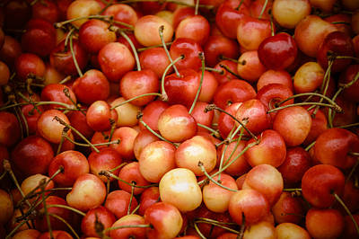 Photograph - Ranier Cherries by Jen Morrison