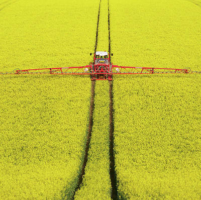 Rape Seed Spraying Art Print by JT images