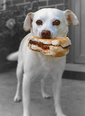 Hamburger Mixed Media - Rascal's Lunch by Steve Ohlsen