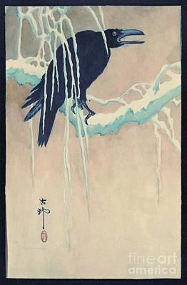 Raven In Snow Art Print by Padre Art
