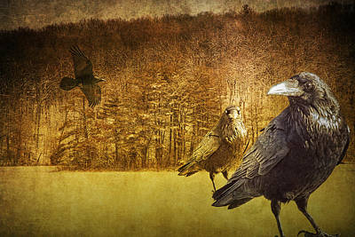 Surrealism Royalty-Free and Rights-Managed Images - Ravens at Hall Lake by Randall Nyhof