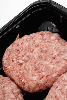 Raw Burger Meat Art Print by Courtesy Of Crown Copyright Fera