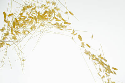 Raw Pasta Against A White Background Art Print