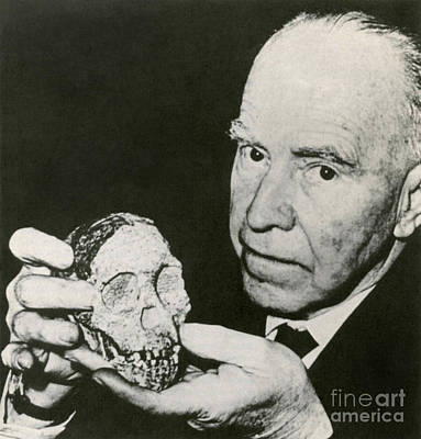 Photograph - Raymond Dart With Taung Child Skull by Science Source