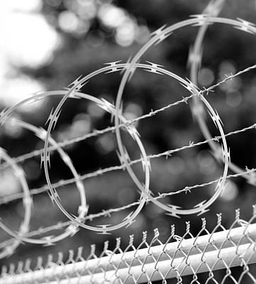 Barbed Wire Fences Photograph - Razor Swirls by Mike Reid