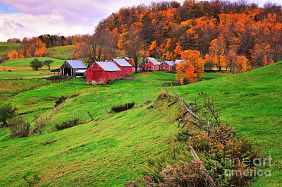 Autumn Scene Photograph - Reading Vermont Scenic by Thomas Schoeller