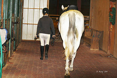 Photograph - Ready For The Dressage Lesson by Roena King