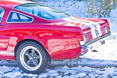 Photograph - Red 1966 Ford Mustang Shelby Back  by James BO Insogna