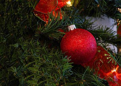 Winter Photograph - Red And Green Christmas by LeeAnn McLaneGoetz McLaneGoetzStudioLLCcom