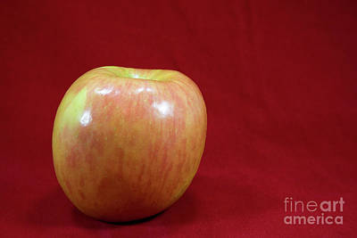 Art Print featuring the photograph Red Apple by Michael Waters