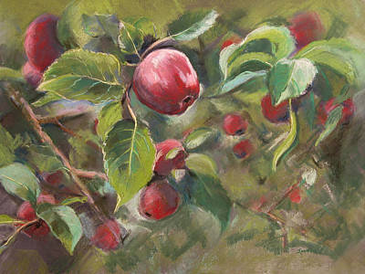 Painting - Red Apples by Synnove Pettersen