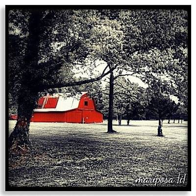 Edit Photograph - Red Barn by Mari Posa