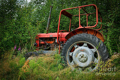 Old Tractors Photograph - Red Beauty by Lutz Baar
