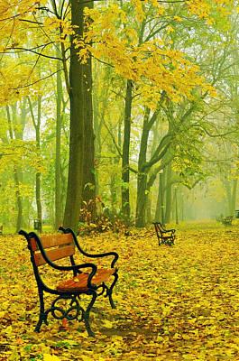 Rural Scene Digital Art - Red Benches In The Park by Jaroslaw Grudzinski