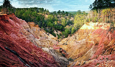 Photograph - Mississippi Red Bluff  by Tamyra Ayles