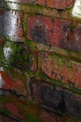 Photograph - Red Brick Macro by Scott Hovind