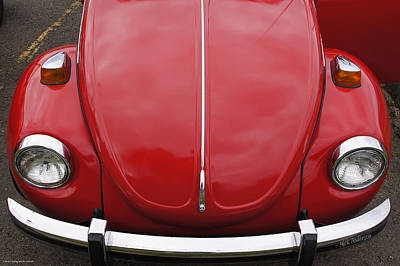 Photograph - Red Bug by Mick Anderson