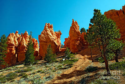 Photograph - Red Canyon Trail by Robert Bales